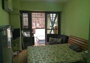 紧邻新世界solo公寓 实用一居 无浪费面积